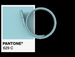 Références Pantone® Bracelet USB